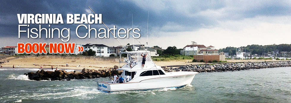 March Hare Sport Fishing Sportfishing Charter Virginia Beach